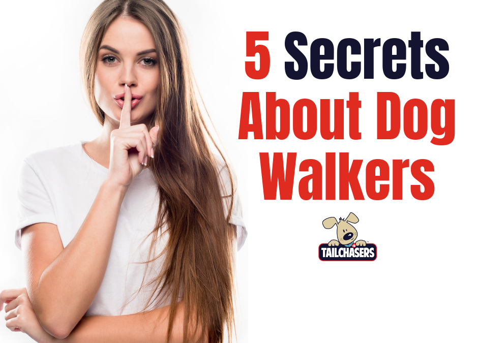 5 Secrets About Dog Walkers