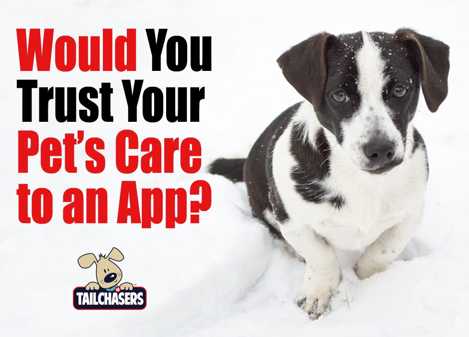 Would You Trust Your Pet's Care to an App?
